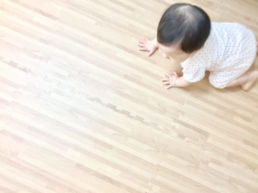 【魚津市完成見学会 WEB予約はコチラから】
